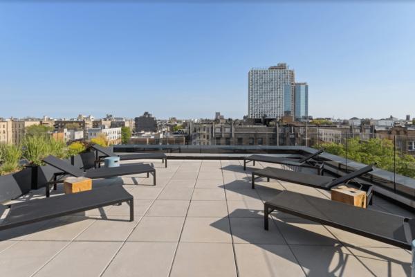 Project Clarkson rooftop-landscape (9)