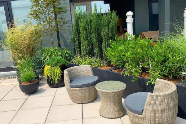 Project Fort Lee court_yard_rooftop