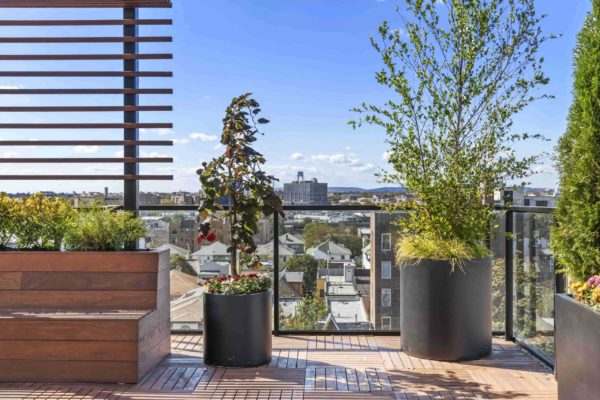 tier_II_landscape_design_commercial_rooftop_brooklyn_IPE_custom_woodwork_kitchen_landscaping_design_build_pergola_9b
