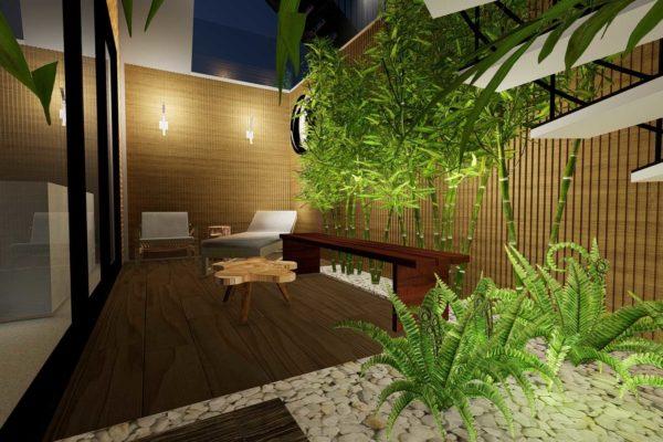 Bamboo plants, night shot
