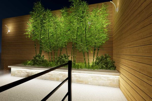 IPE privacy fencing, Bamboo plants, night shot